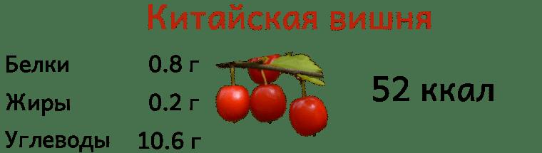 Калорийность китайской вишни