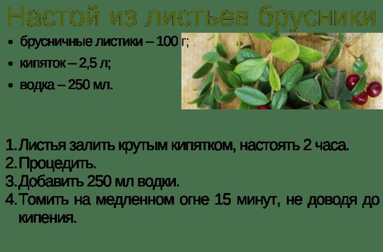 Отвар из листьев брусники